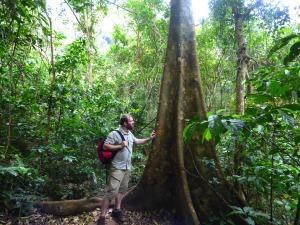 Tree Hugger Gav