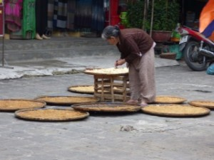 Drying Noodles, Hoi An