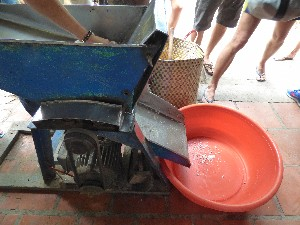 Place coconut into grinding machine to get the flesh out