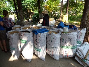 Stack of rice husks for burning