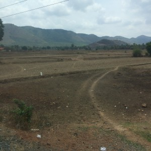 Road to Kep- end of the dry season- not much growing