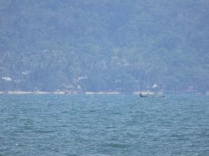 Testing the long zoom- Rabbit Island Beach
