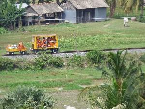 Bamboo railway.