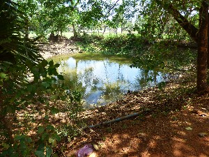 One of the many landmine craters near Kampot