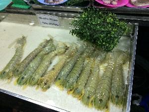 Mantis prawns- they were huge!