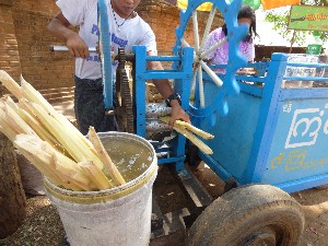 Sugar cane mangle- you'd never get away with this in the UK.