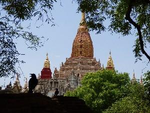 Ananda Pagoda-the most beautiful pagoda