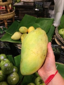 Biggest mango I've ever seen!