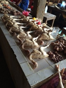 The most artistic display of chicken carcasses I've ever seen...
