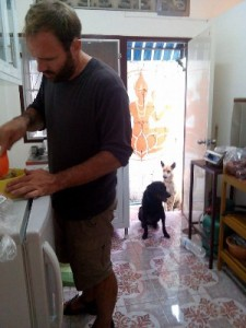 So Gav was preparing the food one day, we had one extra dog...