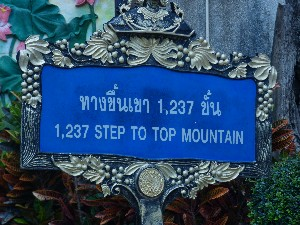 So the trip up to the tiger temple was this many steps..